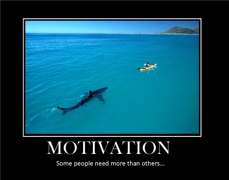 motivation3[1]