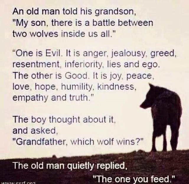Feeding-wolves-e1422533596869[1]